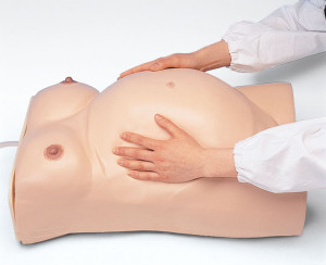 Maternity Model TypeⅠ